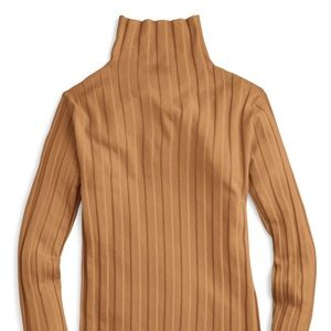 NWT J. Crew XL ribbed stretch turtleneck in brown
